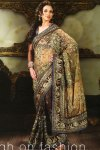 saree design 2010 net and shimmer georgette