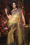 saree design 2010 galss tissue saree with embroidery work