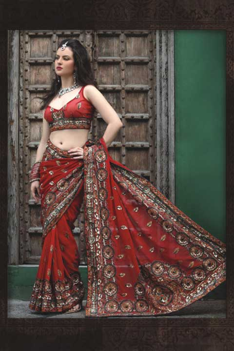 Indian Saree Fashion