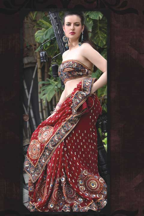 Saree Fashion 2010