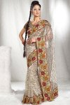 Latest Net Embroidered Saree Design 2010