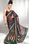 Latest Glass Tissue Saree 2010