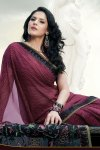 Latest Designer Sarees Collection for the year 2010