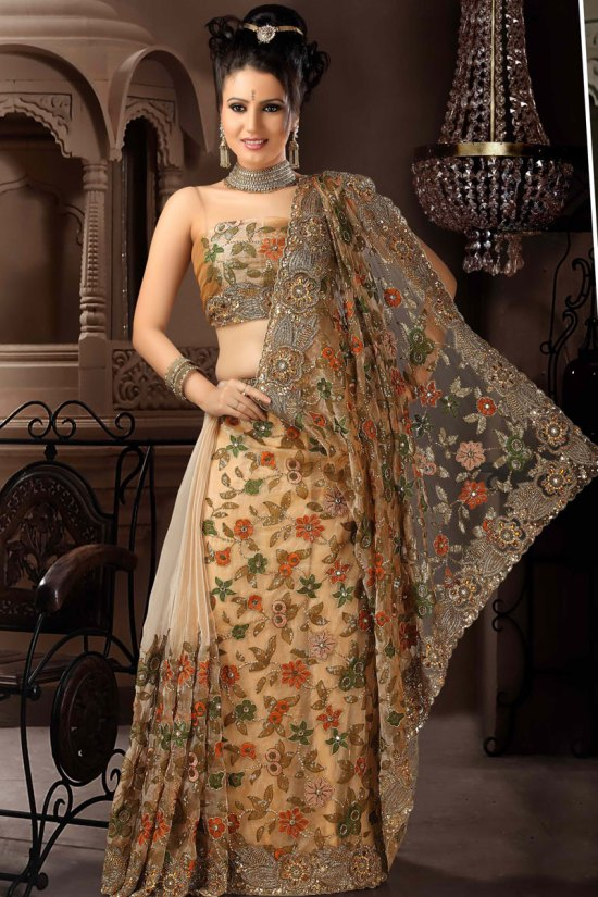 Brown Net Wedding Saree 2010