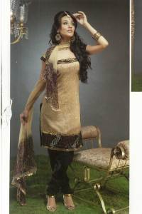 Brown and Black Churidar Kameez Design