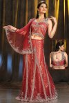 Simple A Cut Chestnut Red Lehenga Choli 2010