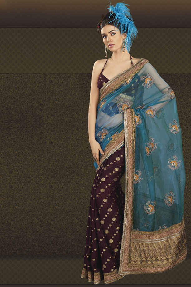 Half Banarasi and Half Net Saree with Stunning Saree Blouse Design