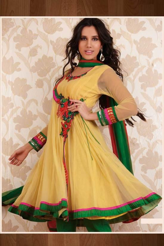 Yellow and Green Net Anarkali Style Salwar Kameez 2010
