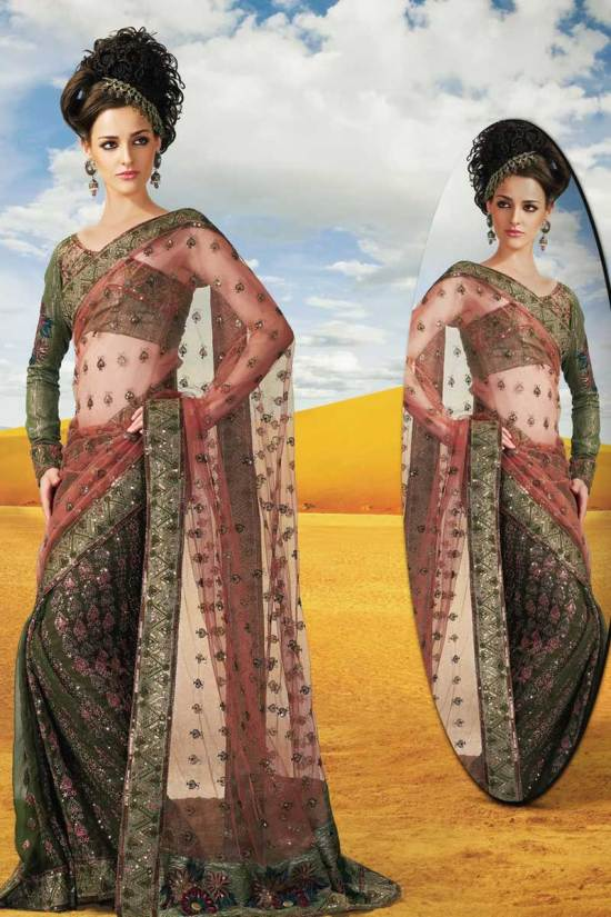 Net Full Sleeves Designer Dewali Saree Collection 2010