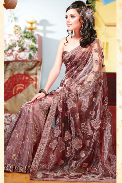 Stunning Bole Brown Tissue Saree for Diwali 2010