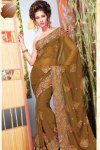 Designer Embroidered Sarees for Diwali 2010