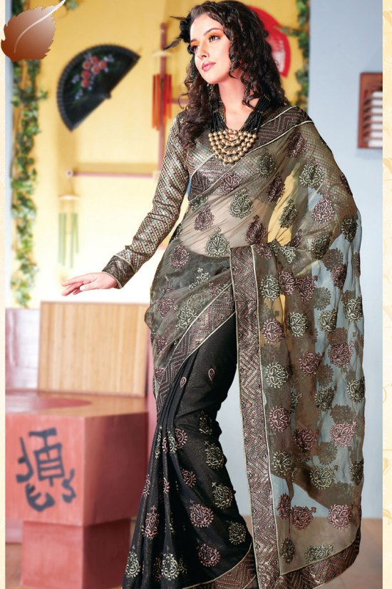 Designer Net Saree for Diwali 2010 with Full Sleeves matching Blouse