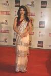 priyanka chopra in heavy border saree at color screen awards