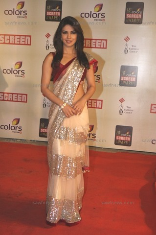 priyanka chopra in heavy border saree at color screen awards