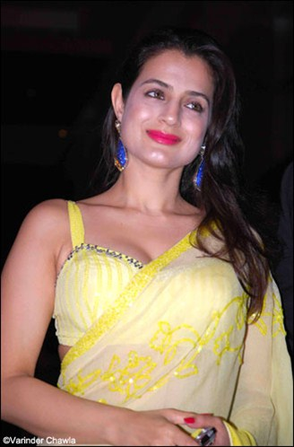amisha patel in a light yellow saree with sleeveless saree blouse at ritesh genelia reception party