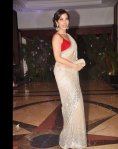 sophia chowdhury in a off white saree and red blouse at ritesh and genelia sangeet ceremony