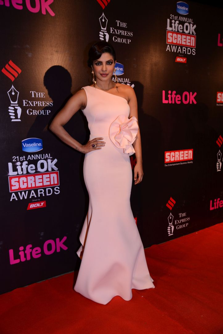 Priyanka Chopra in Life Ok Screen Awards 2015